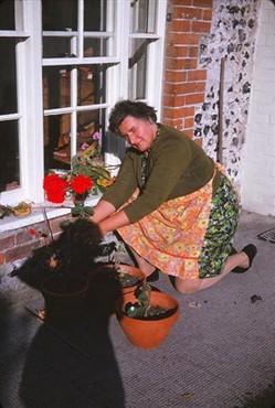 Elsie Kyte taking cuttings, 1962