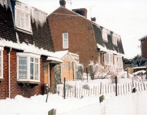 Winter, 1981