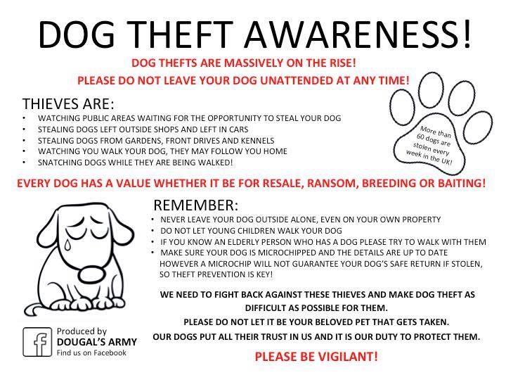 2018-02-21 Dog Theft