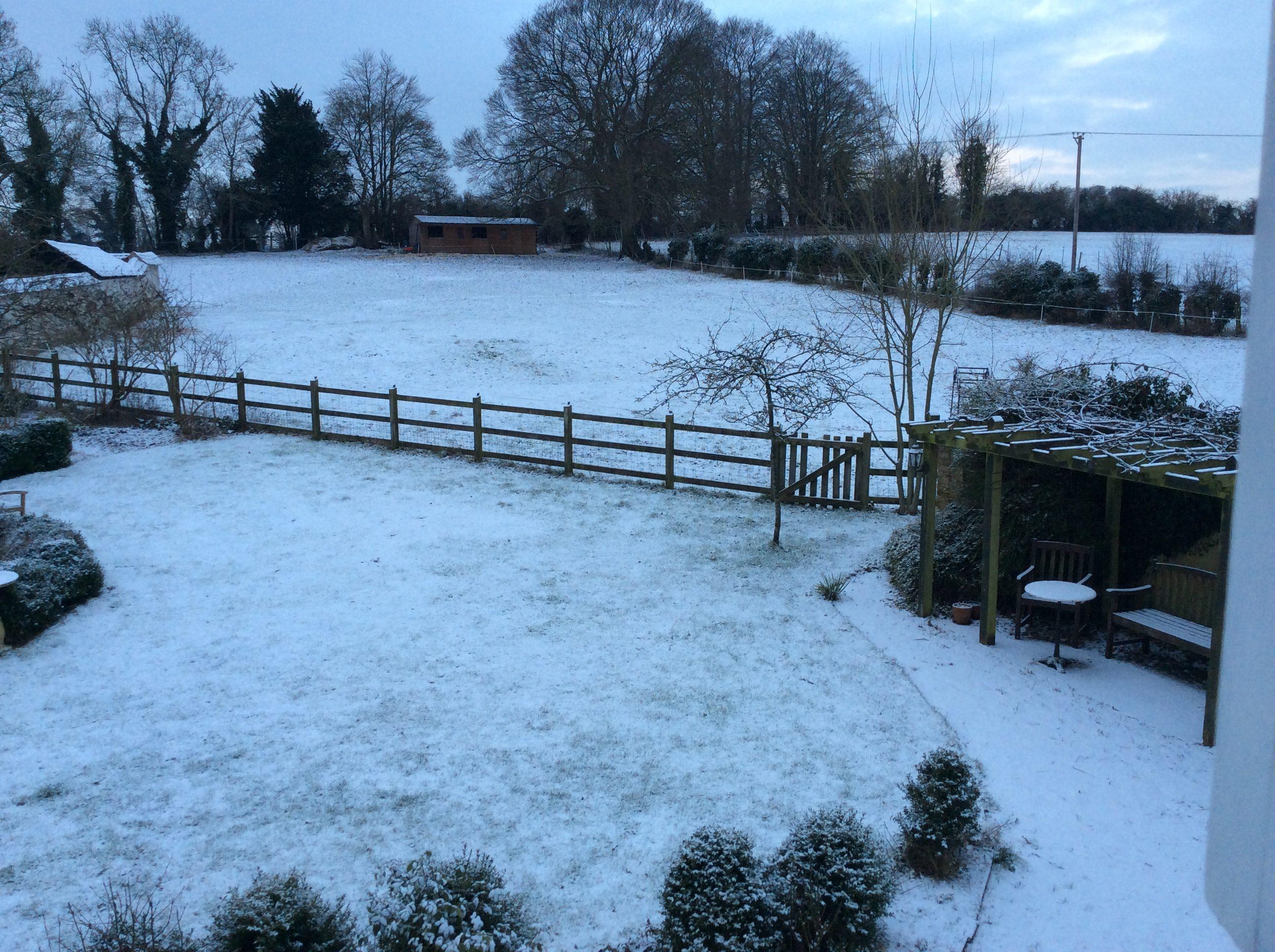 Frank's Garden in February 2015