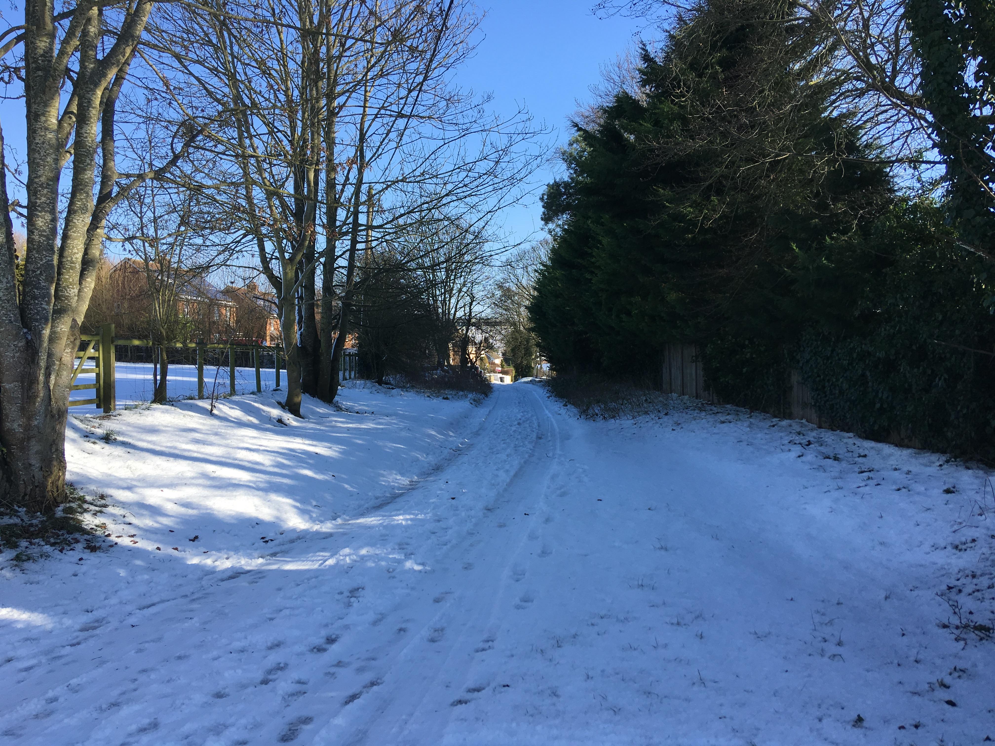 Back Lane (North)